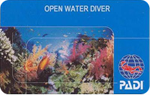 курс open water diver
